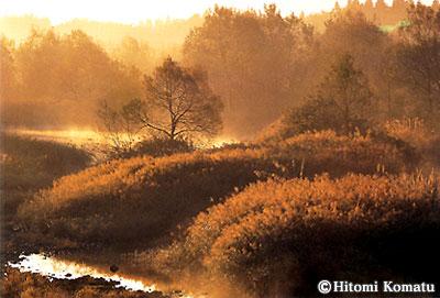 今月の一枚・2003年12月「霜枯の川(秋田・角館町)」
