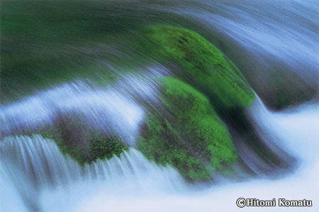 今月の一枚・2004年8月「苔と流れ」