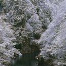 初冬の抱返り渓谷(秋田県角館町)
