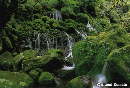 今月の一枚・2006年7月「苔むす元滝」