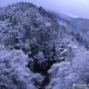 冬来(真木渓谷)