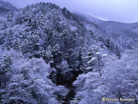 今月の一枚・2006年12月「冬来」(真木渓谷)