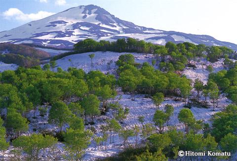 今月の一枚・2007年5月「残雪と新緑の鳥海山 」