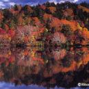 秋の長沼(秋田・八幡平)