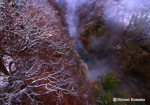今月の一枚・2008年11月「新雪の小安峡」(秋田県湯沢市皆瀬)