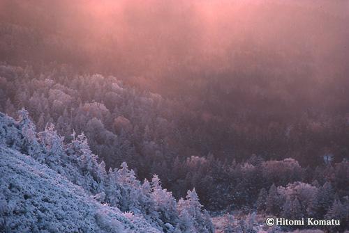 今月の一枚・2009年11月「冬来」(八幡平)