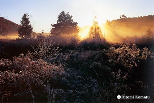 今月の一枚・2010年1月「冴え返る湿原(八幡平)」