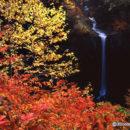 錦秋 曽利の滝(八幡平)