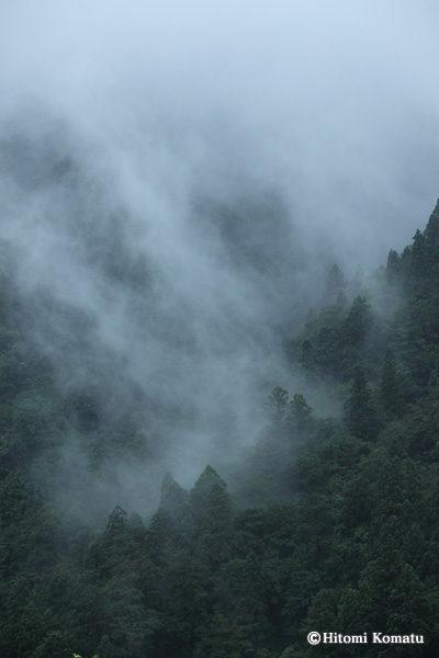 今月の一枚・2011年7月-8月 「雨の道(秋田県仙北市)」