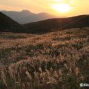 芒原と男鹿新山