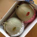 「栃木でメロンを頂く」の巻き
