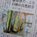 世界遺産センター 岳岱風景林の400年ブナの等身大の写真も展示