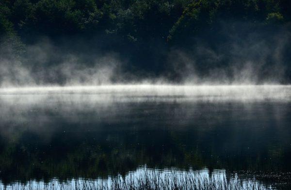 2014年9月 今月の一枚「靄」