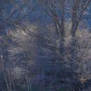 秋田市内から車で10分ほど・・・寒い日にはこんな光景が・・・